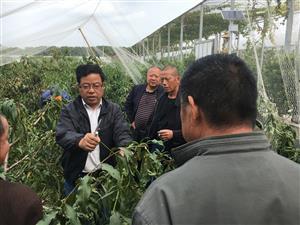 盛泽镇开办残疾人农业技术培训班
