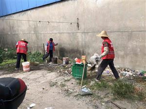 杨扇村组织开展农村人居环境整治行动